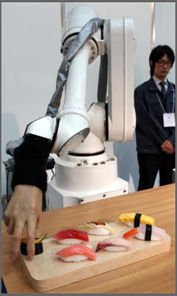 Japan Chef Robot